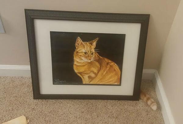 γάτα πίνακας